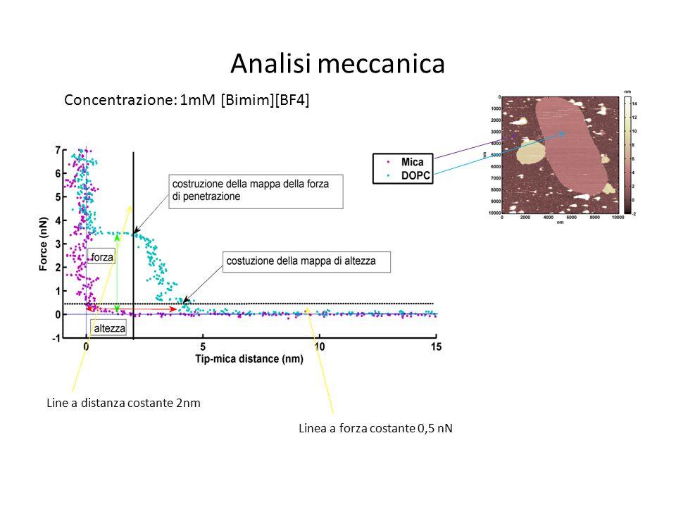 Analisi meccanica Concentrazione: 1mM [Bimim][BF4]